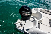 18 ft. Bayliner Element XL 4-S Mercury  Bow Rider Boat Rental Miami Image 9