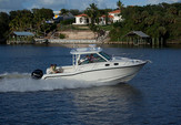 31 ft. Boston Whaler 315 Conquest w/2-300CXL DTS Verado Bass Boat Boat Rental New York Image 5
