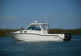 31 ft. Boston Whaler 315 Conquest w/2-300CXL DTS Verado Bass Boat Boat Rental New York Image 9