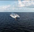 38 ft. Cabo Yachts 35 Flybridge Flybridge Boat Rental Tampa Image 21