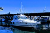 36 ft. Maxum 3300 SCR Cruiser Boat Rental Seattle-Puget Sound Image 6