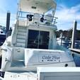 51 ft. Sea ray sedan bridge 480 Sedan Bridge Cruiser Boat Rental Miami Image 3