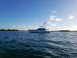 65 ft. Donzi Convertible Offshore Sport Fishing Boat Rental West Palm Beach  Image 34