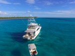 65 ft. Donzi Convertible Offshore Sport Fishing Boat Rental West Palm Beach  Image 5
