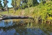16 ft. Sylvan Marine 1600 Explorer SC Pontoon Boat Rental Orlando-Lakeland Image 30