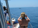 27 ft. Other Proline super Sport 27' Saltwater Fishing Boat Rental Panama City Image 8