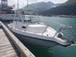 22 ft. Other Wa sportfisher Cuddy Cabin Boat Rental Seward Image 1