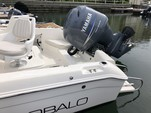 19 ft. Robalo 190 W/150 4-S Center Console Boat Rental Los Angeles Image 3