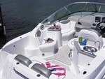 25 ft. Sea Ray Boats 240 Sundancer Cruiser Boat Rental Miami Image 5