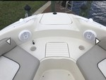 26 ft. Sea Ray Boats 240 Sundeck Deck Boat Boat Rental Rest of Northeast Image 6