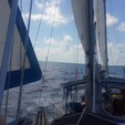 41 ft. Morgan by Catalina Out Island 41 Cruiser Boat Rental Tampa Image 1