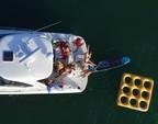 41 ft. 41' SeaRay Cruiser Boat Rental Miami Image 38