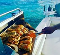 28 ft. Contender Boats 25 Open w/2-200HP Center Console Boat Rental Punta Cana Image 3
