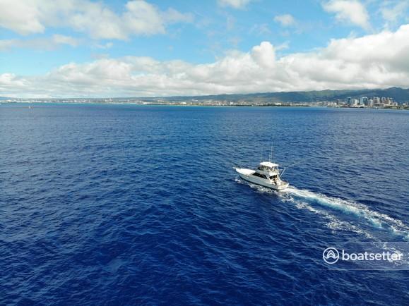 Rent a Viking Yacht offshore sport fishing in Honolulu, HI near me