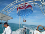 60 ft. Other Parasailing Package Bow Rider Boat Rental The Keys Image 5