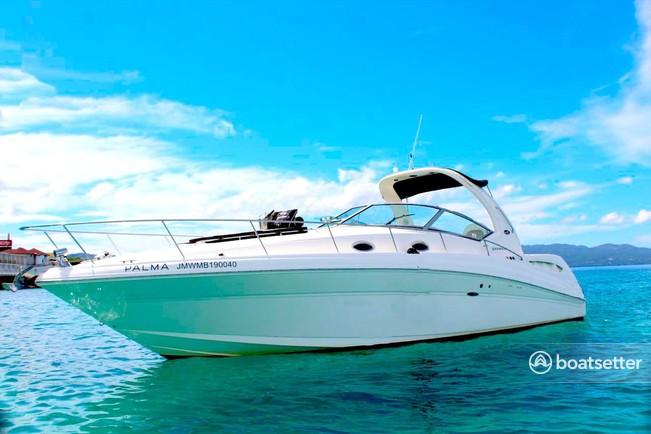 Rent a Sea Ray Boats motor yacht in Reed Creek, GA near me