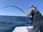 28 ft. Contender Boats 28 Tournament Offshore Sport Fishing Boat Rental Boston Image 31