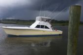 52 ft. Sportfishing 52' Offshore Sport Fishing Boat Rental Jacksonville Image 1