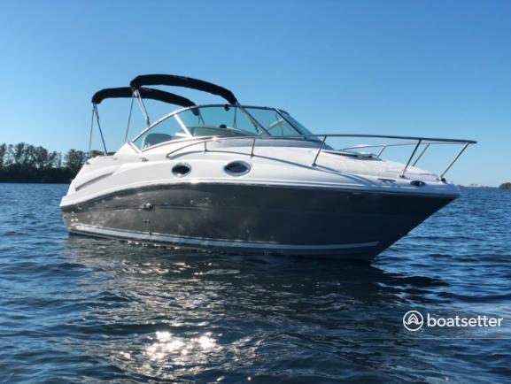 Rent a Sea Ray Boats cruiser in Dunedin, FL near me