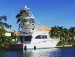 65 ft. Donzi Convertible Offshore Sport Fishing Boat Rental West Palm Beach  Image 41