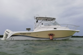 32 ft. Pro-Line Boats 32 Express Walkaround Boat Rental Miami Image 1