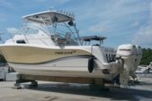 32 ft. Pro-Line Boats 32 Express Walkaround Boat Rental Miami Image 5