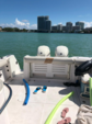 32 ft. Pro-Line Boats 32 Express Walkaround Boat Rental Miami Image 6