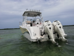 32 ft. Pro-Line Boats 32 Express Walkaround Boat Rental Miami Image 16