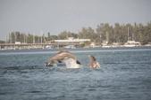20 ft. Avalon Pontoons 20' CC Fish N Fun Pontoon Boat Rental Tampa Image 2