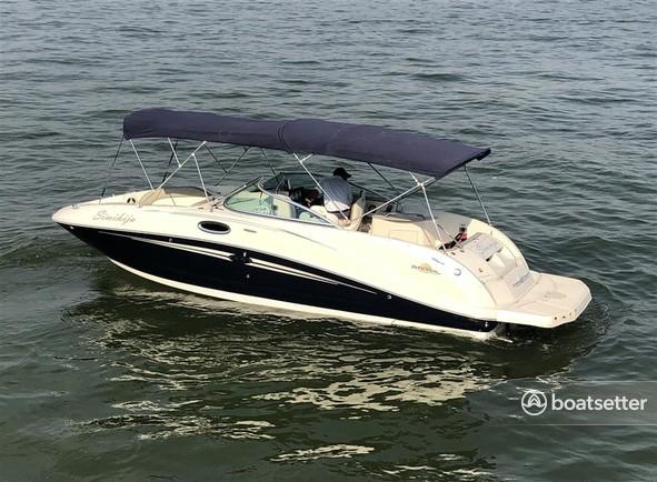 Rent a Sea Ray Boats deck boat in Sarasota, FL near me
