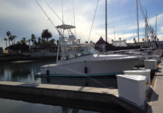 34 ft. Luhrs Boats 31 Open Offshore Sport Fishing Boat Rental San Diego Image 3