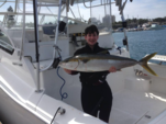 34 ft. Luhrs Boats 31 Open Offshore Sport Fishing Boat Rental San Diego Image 6