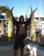34 ft. Luhrs Boats 31 Open Offshore Sport Fishing Boat Rental San Diego Image 5