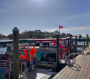 24 ft. Avalon Pontoons 2425x8.5 Paradise L Pontoon Boat Rental Rest of Southeast Image 5