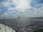 36 ft. Hunter 37 Sloop Boat Rental Rest of Southeast Image 10