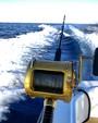 35 ft. Bertram Yacht 35 Sportfish Saltwater Fishing Boat Rental Miami Image 3