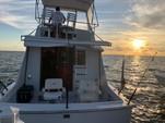 34 ft. Bertram Flybridge Cruiser Offshore Sport Fishing Boat Rental Cancún Image 6