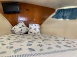 34 ft. Bertram Flybridge Cruiser Offshore Sport Fishing Boat Rental Cancún Image 9