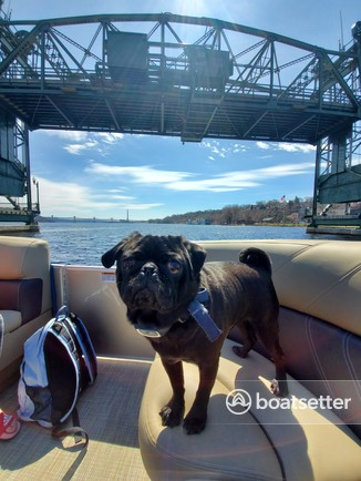 Rent a Sylvan Marine pontoon in Stillwater, MN near me