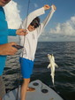 18 ft. Hell's Bay Boatworks Waterman 18 Full Deck SC  Flats Boat Boat Rental Miami Image 2