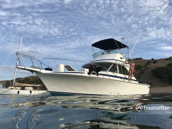 Rent a Bertram Yacht flybridge in Huntington Beach, CA near me