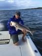 24 ft. Blazer Boats 2420 Florida Edition Flats Boat Boat Rental Tampa Image 4