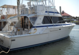 42 ft. Bertram Yacht 42' Offshore Sport Fishing Boat Rental Daytona Beach  Image 3