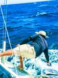 43 ft. Hunter Passage 42 Sloop Boat Rental Cabo Image 10