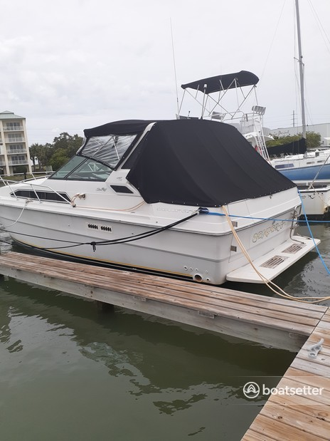 Rent a Sea Ray Boats express cruiser in St. Petersburg, FL near me