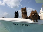22 ft. Cobia 2200 CC Center Console Boat Rental The Keys Image 10