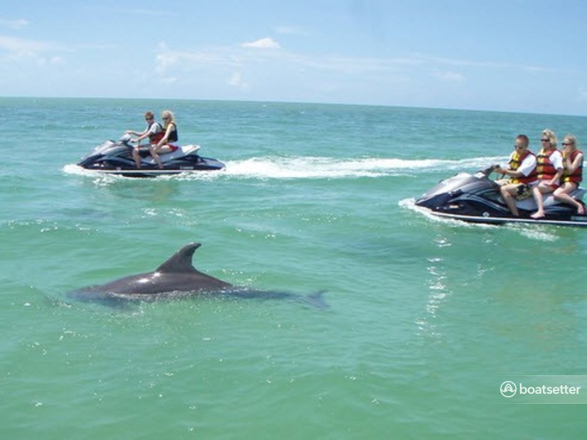 Rent a Yamaha jet ski_/_personal_water_craft in Clearwater, FL near me