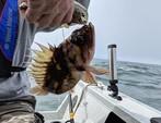 18 ft. Smoker Craft 18 Phantom Aluminum Fishing Boat Rental Seattle-Puget Sound Image 7