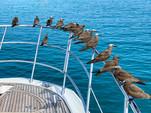 70 ft. Azimut Flybridge Motor Yacht Boat Rental Miami Image 38