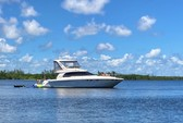 52 ft. Sea Ray Boats 480 Sedan Bridge Motor Yacht Boat Rental West Palm Beach  Image 147
